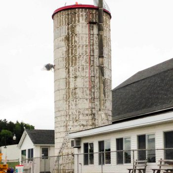 Dairy-barn silo before paint job. Notice us installing new roof.